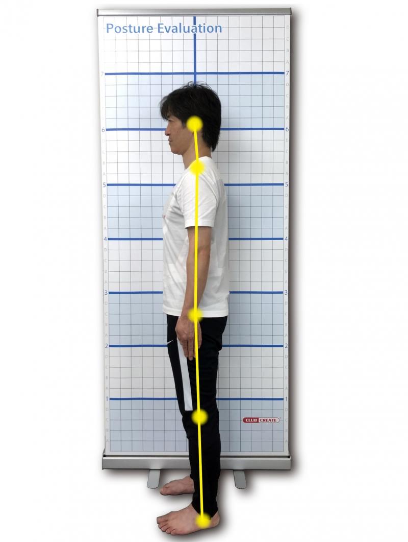姿勢分析 Posture Evaluation(ポスチャーエバリュエーション) 画像検索結果
